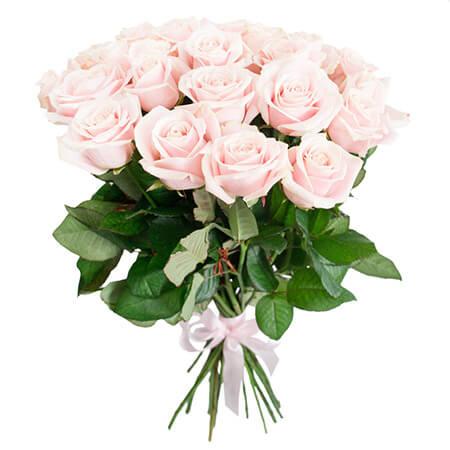 Букет 25 светло-розовых роз