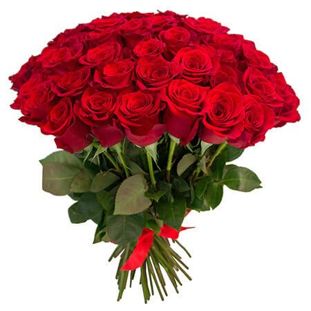 Букет 65 красных роз
