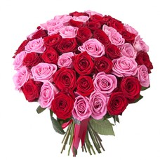 Букет 51 красная и розовая роза