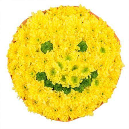 Игрушка из цветов «Улыбка»