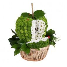 Игрушка из цветов «Яблочко»