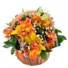Корзина «Орхидеи в корице»