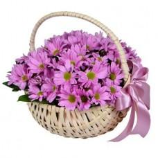 Корзина «Розовые ромашки»